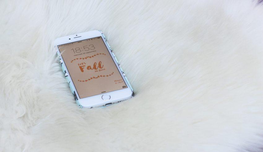 foto de À télécharger - Fond d'écran et Calendrier octobre 2015 - Minou le ...
