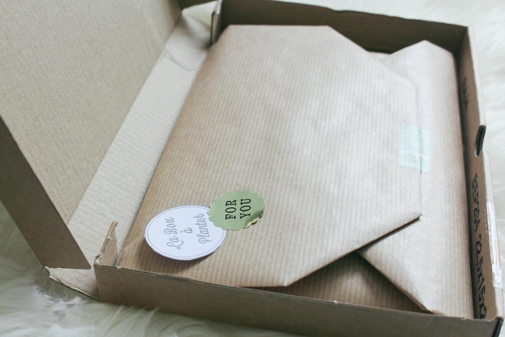 la_box_a_planter_avis-2