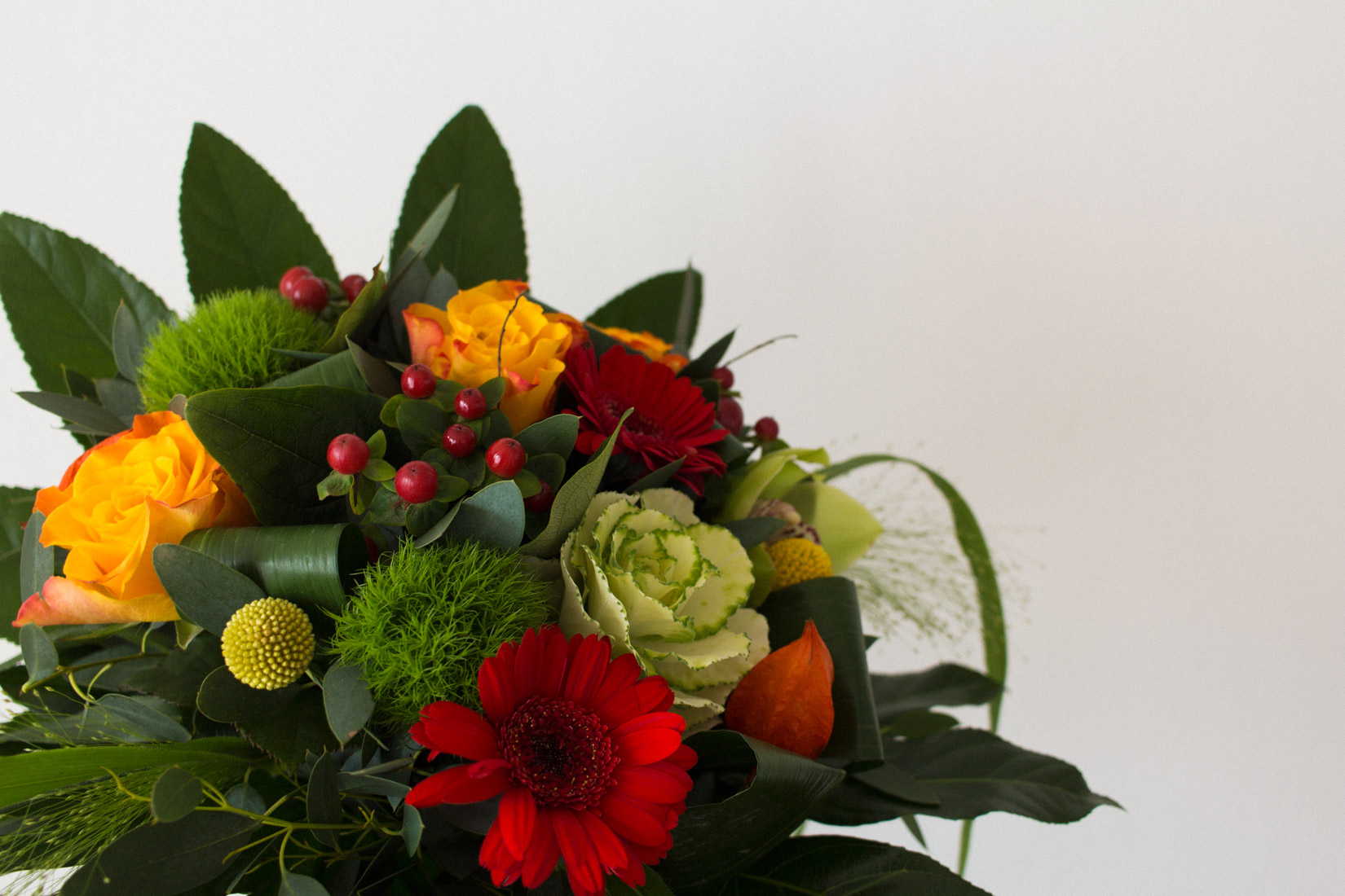 Mes favoris #6 : Atelier Mouette, Monceau Fleurs à Rennes & Spirit Collection de V&B - Minou le chat